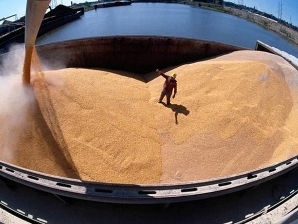 Объемы производства пшеницы оправдают пессимистический сценарий, - эксперт фото, иллюстрация