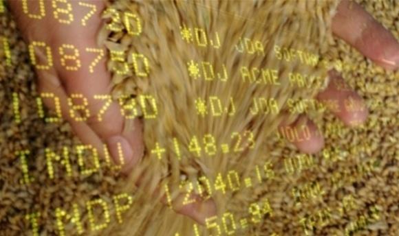 Пшеничні котирування падають слідом за цінами на сою та кукурудзу фото, ілюстрація