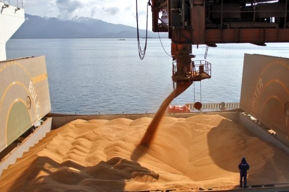 Мексика диверсифікує джерела імпорту пшениці фото, ілюстрація