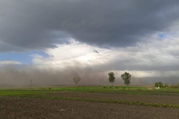 Пилова буря «накрила» декілька сіл на Тернопільщині  фото, ілюстрація