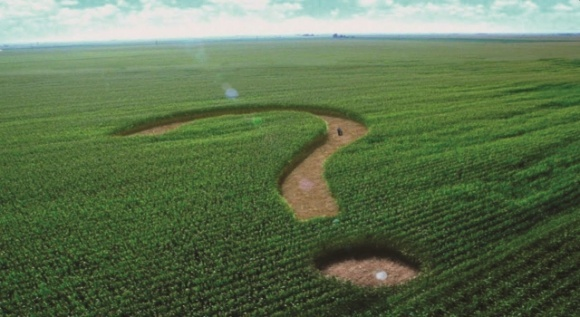 Відкриття ринку землі: сумнівний юридичний акт із незрозумілим економічнім ефектом фото, ілюстрація
