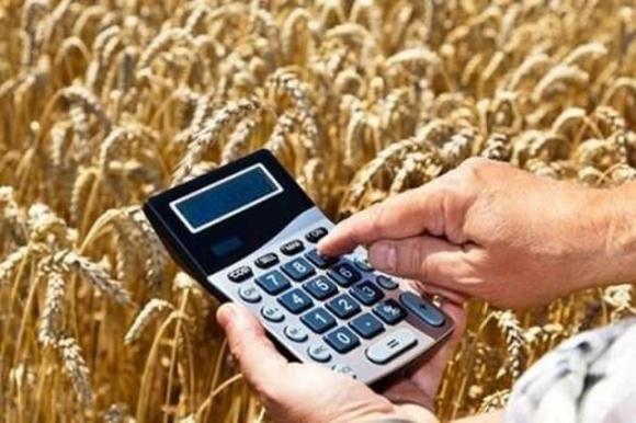 Зниження портових зборів дозволить зменшити вартість продукції аграріїв на внутрішньому ринку, — Козаченко фото, ілюстрація