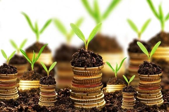 Аграрії заробили 239 млн грн завдяки аграрним розпискам фото, ілюстрація
