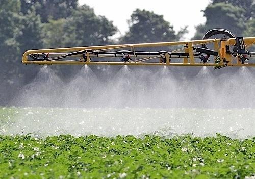 Агрохіміки назвали неефективним використання ЗЗР агрономами в сезоні-2017 фото, ілюстрація