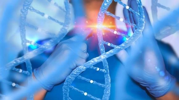 В США в 10 раз увеличили перечень разрешенных культур с отредактированными генами фото, иллюстрация