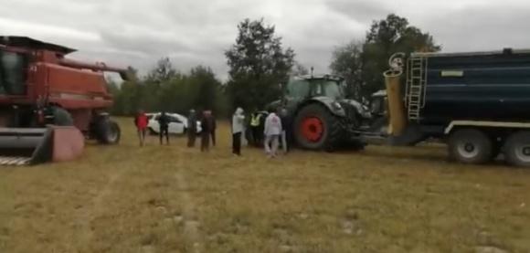 Подсолнечник и «титушки»: на Житомирщине молодчики пытались собрать чужой урожай фото, иллюстрация