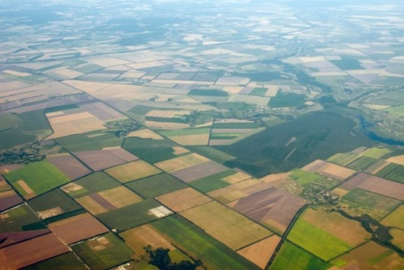 У украинцев заберут право на получение бесплатного участка земли фото, иллюстрация