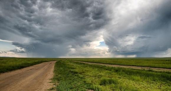 В Кировоградской обл. обнаружено нарушения земельного законодательства на 3,7 млн грн фото, иллюстрация
