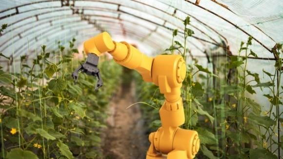 В Австралії відкриють ферму, керовану ШІ і роботами фото, ілюстрація