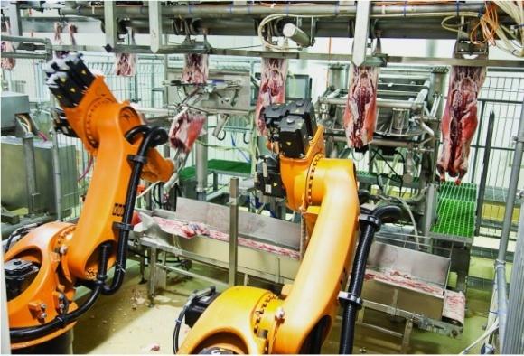 Робот с искусственным интелектом будет обрабатывать мясные туши фото, иллюстрация