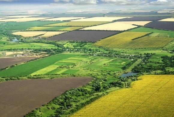 В феврале начнется передача земли за пределами населенных пунктов в собственность территориальных общин фото, иллюстрация