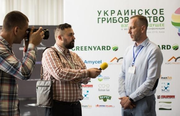 Украинское производство грибов - взгляд в будущее фото, иллюстрация