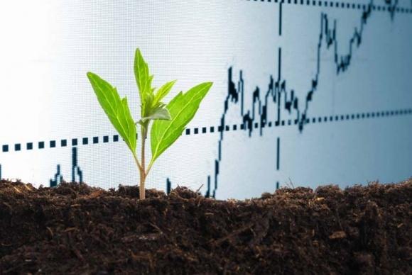 Світовий ринок органічних добрив досягне $11,16 млрд до 2022 року фото, ілюстрація