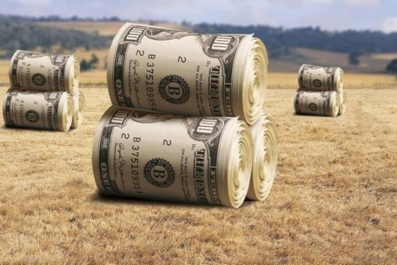 Оптимальный лимит концентрации земли в одних руках — 3-7 тыс. га, — Высоцкий фото, иллюстрация