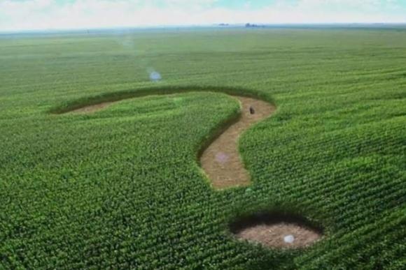Важнейшая задача земельной реформы в Украине — избежать концентрации земли в одних руках, считает посол Франции фото, иллюстрация