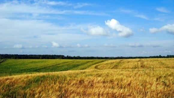 Поспіх у земельній реформі недоречний, - ЄБРР фото, ілюстрація