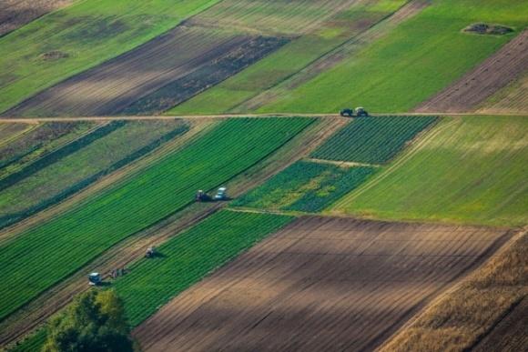 Аграрний комітет у закритому режимі повторно розглядає поправки до законопроєкту про ринок землі фото, ілюстрація