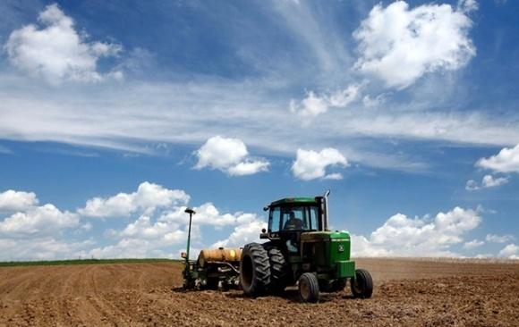 Аграрії засіяли ярими зерновими 96% прогнозованих площ фото, ілюстрація