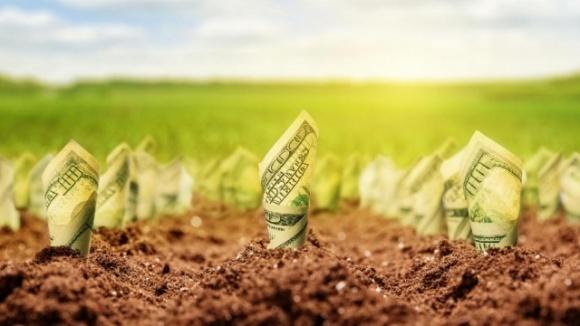 Государственную землю будут разворовывать, госбюджет и пайщики получат меньше денег, — Тимофей Милованов фото, иллюстрация
