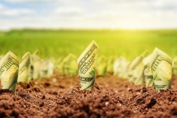 Подавляющее большинство украинцев против покупки земли сельхозназначения иностранцами фото, иллюстрация
