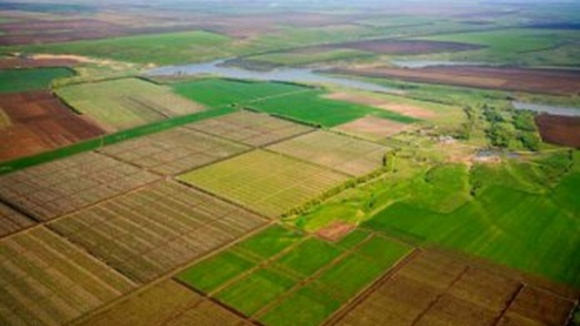 Скільки сільгоспземлі в Україні знаходиться в тіні фото, ілюстрація