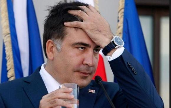 Аграрная платформа Саакашвили реально не поддержит крестьян, - эксперты фото, иллюстрация