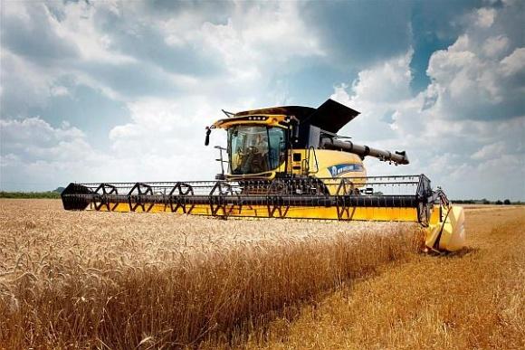 Агролайфхак: оптимальные сроки уборки урожая ячменя фото, иллюстрация