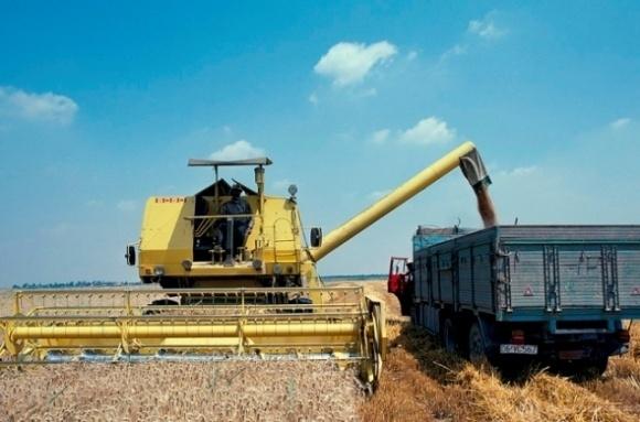 Одесчина планирует собрать лучший урожай зерновых в Украине фото, иллюстрация