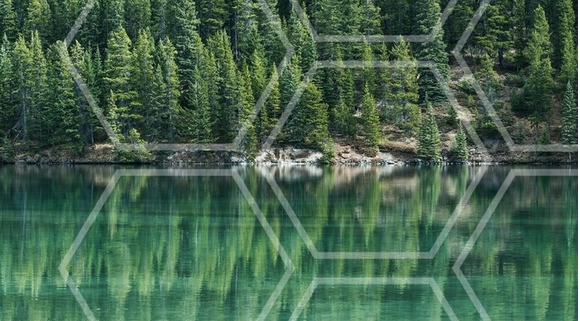 Microsoft выделит $2 млн на стартапы по сельскому хозяйству и экологии фото, иллюстрация