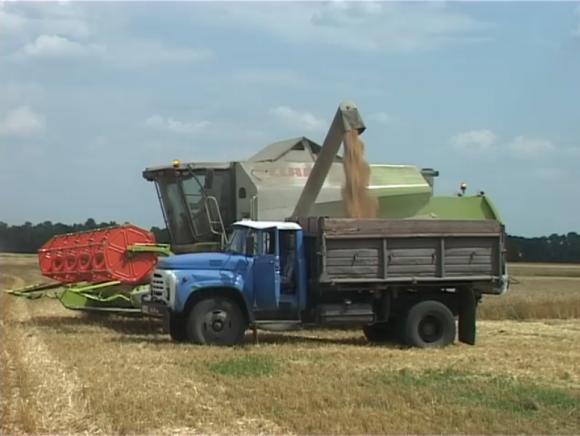 В Сумской области планируют собрать более 3,5 млн тонн зерна фото, иллюстрация