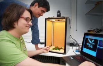 Немецкие ученые создали лазер для уничтожения сорняков фото, иллюстрация