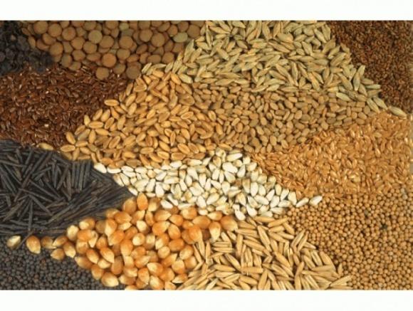 Индия: цены резко возрастают на широкий ассортимент продуктов фото, иллюстрация