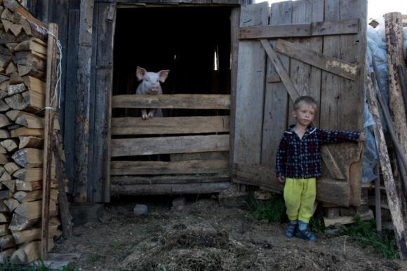 Нужно ли спасать село, которое обречено? фото, иллюстрация