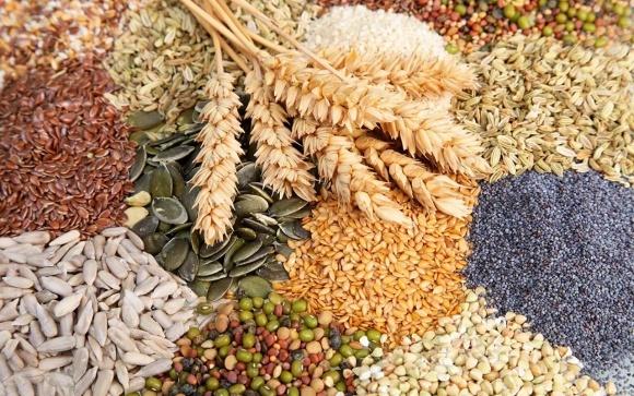 В Украине появился онлайн-сервис для участников аграрного рынка фото, иллюстрация