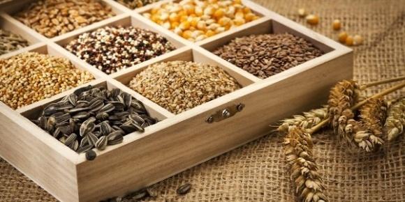 Украине нужно добиться признания своей системы сертификации семян в ЕС фото, иллюстрация