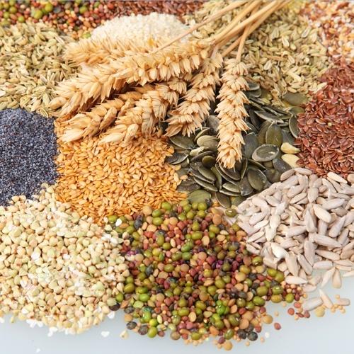 У цьому році зернових та зернобобових культур буде вироблено на 10.6% більше, ніж торік – Микола Пугачов  фото, ілюстрація