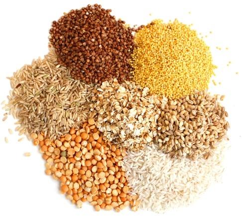 Прогноз производства зерновых увеличен на 13% за счет кукурузы фото, иллюстрация