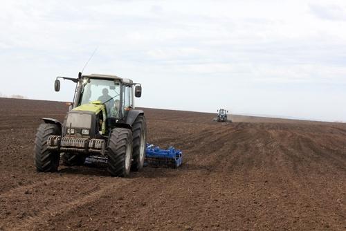 Високі ціни на зернові можуть спричинити більше скорочення посівних площ під цукровими буряками в СНД – Sucden фото, ілюстрація