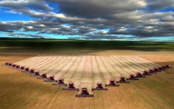 Производителей курятины и кукурузы не стоит упрекать за успех, — аграрии ответили критикам АПК фото, иллюстрация