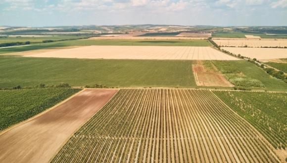 Названо области с высокой и низкой нормативной денежной оценкой земли фото, иллюстрация