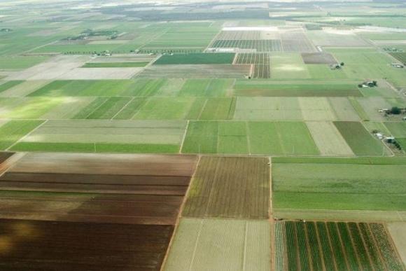 В Украине будут по-новому контролировать операции с землей: что изменится фото, иллюстрация