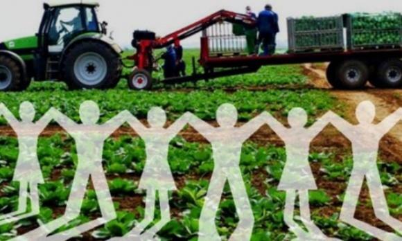 Правительство снизило налоговую нагрузку на сельскохозяйственные кооперативы фото, иллюстрация