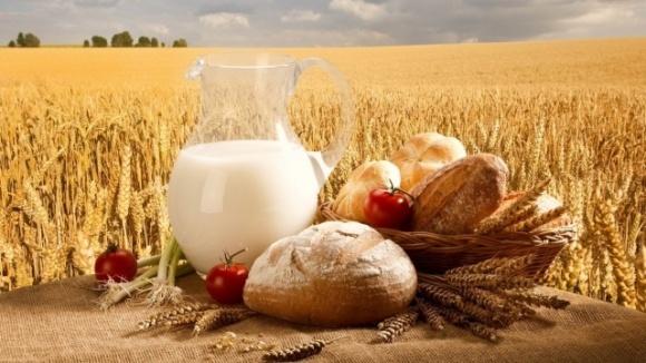 Виробництво сільгосппродукції в Україні в I півріччі впало на 18,7% фото, ілюстрація