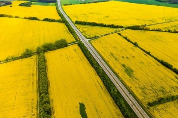 В Одесской области суд отменил передачу особо ценных земель НААН Украины фото, иллюстрация