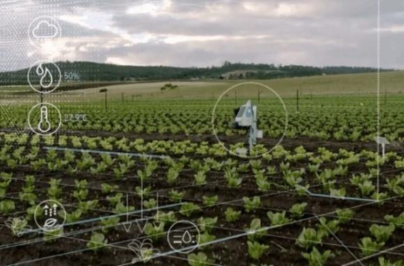 Американская компания, используя ИИ, помогает фермерам экономить сотни тысяч долларов фото, иллюстрация