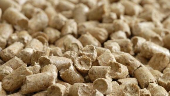 Українських виробників ріпакового шроту погодили для експорту в КНР фото, ілюстрація