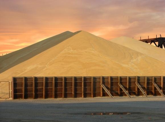 «Нібулон» закріпиться на зерновому ринку Єгипту фото, ілюстрація