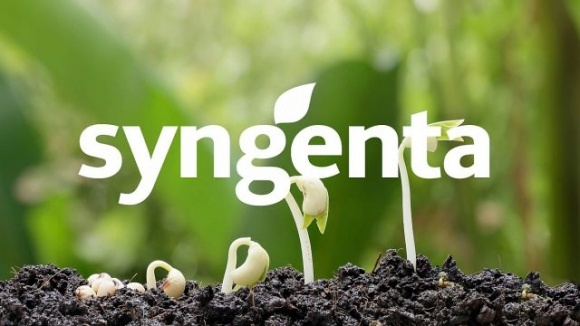 Syngenta покупает крупного производителя биопрепаратов Valagro фото, иллюстрация