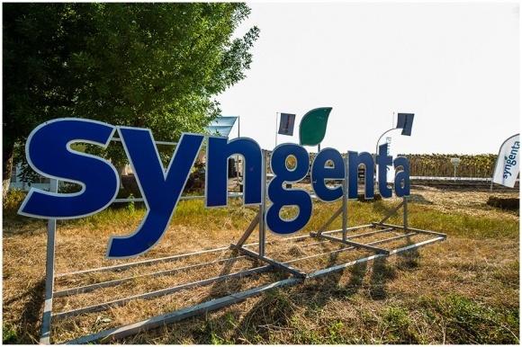 Syngenta законтрактувала 317 тис. т сільгосппродукції в Україні фото, ілюстрація