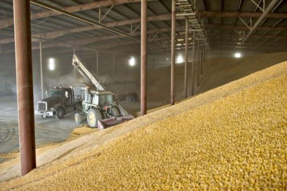 Запасы зерновых и зернобобовых в Украине за год сократились на треть фото, иллюстрация